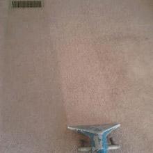 Carpet During